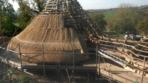 Thatching underway November 2014